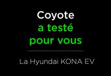 coyote a teste pour vous