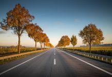 Horizon d'une route d'automne